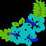 chrooscorner